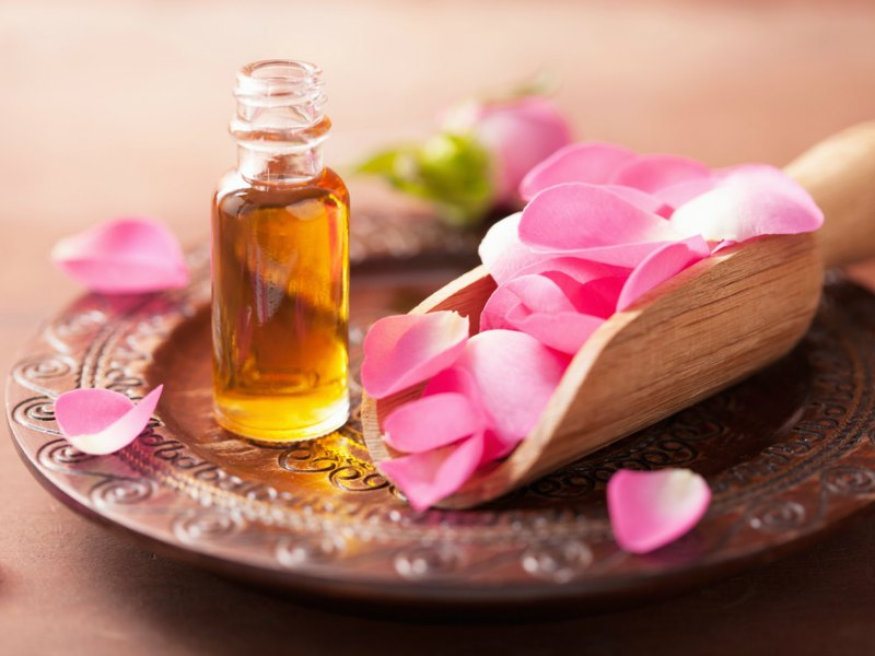 Rose Oil – Aromatherapy Focus